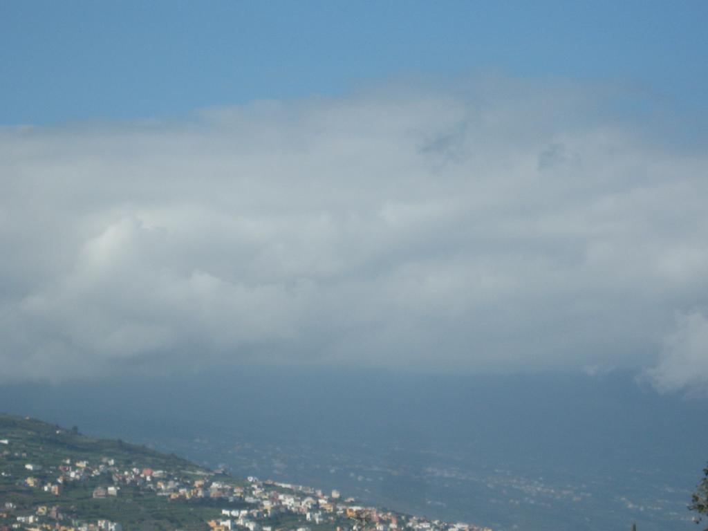 Tenerife Mai 2008 (210).JPG