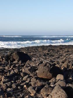 Fuerteventura Febr 2020 web (39)