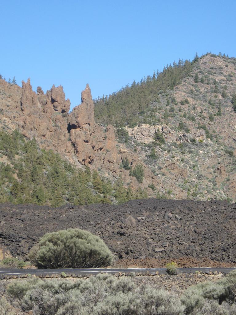 Tenerife Mai 2008 (439).JPG