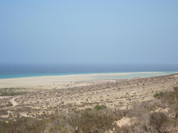 Fuerteventura Juni 2011 (83).JPG