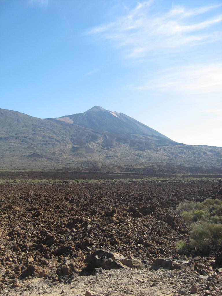 Tenerife Mai 2008 (435).JPG