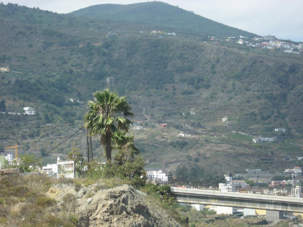 Tenerife Mai 2008 (256).JPG