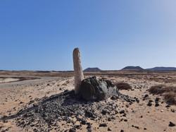 Fuerteventura Febr 2020 web (28)