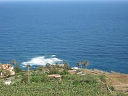 Tenerife Mai 2008 (237).JPG