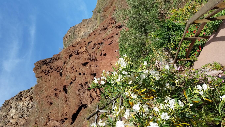 Gran Canaria Mai 2015 (17).JPG