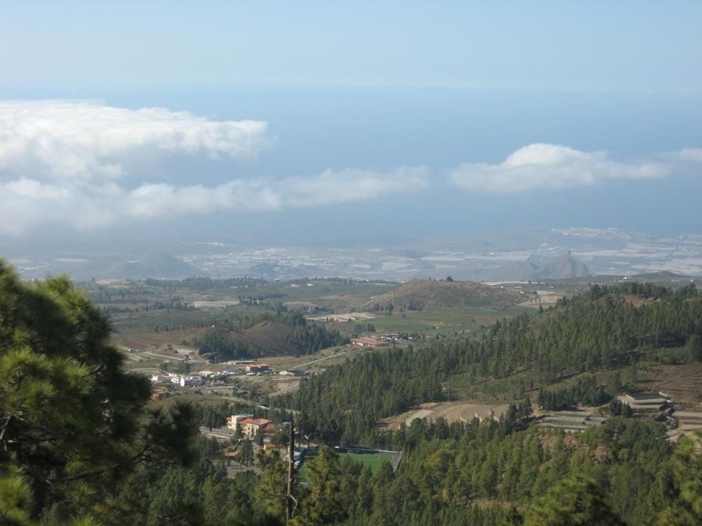 Tenerife Mai 2008 (398).JPG