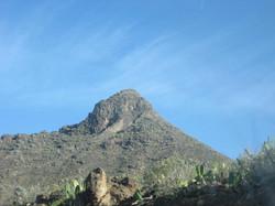 Tenerife Mai 2008 (360).JPG