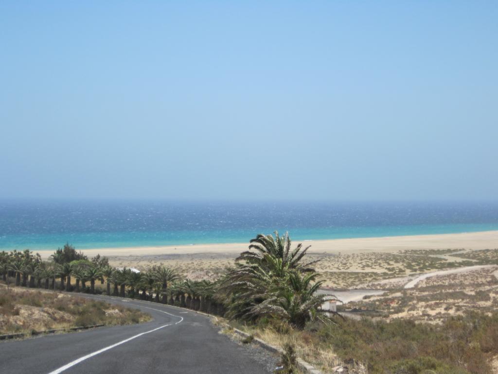 Fuerteventura Juni 2011 (81).JPG