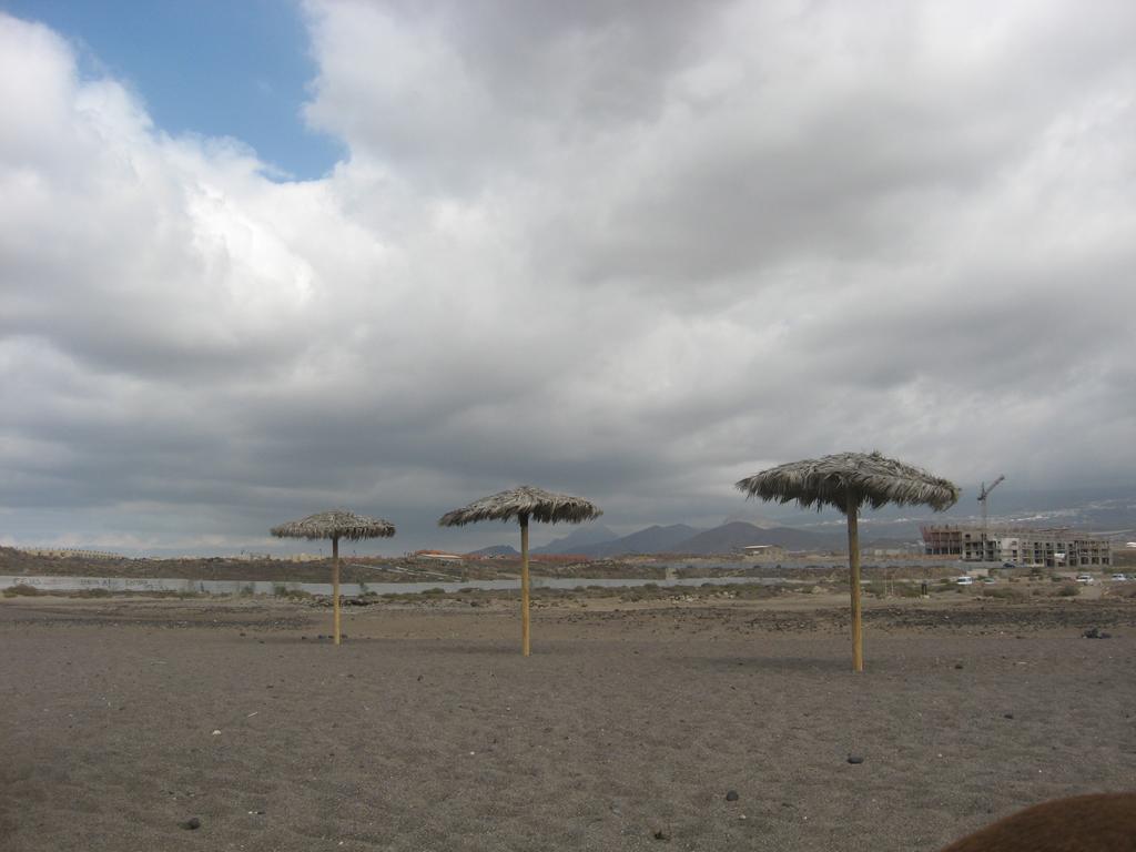 Tenerife Mai 2008 (71).JPG