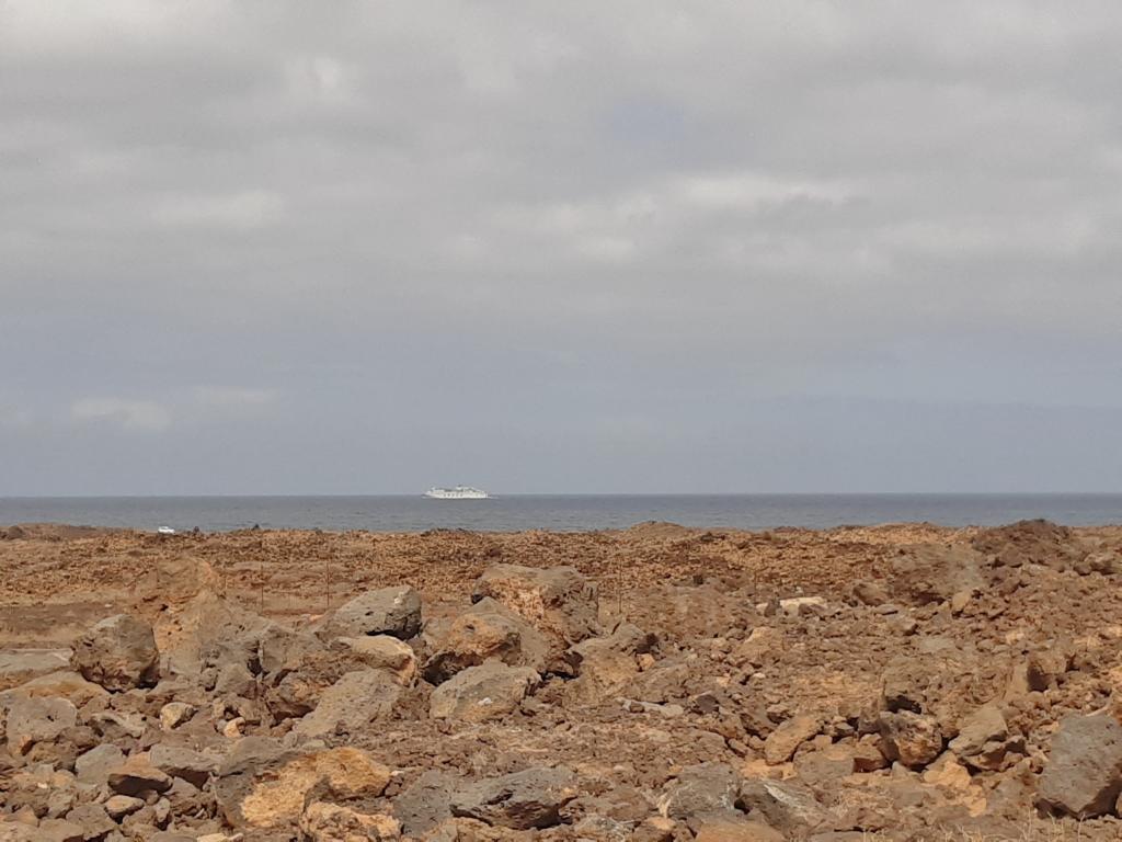 Fuerteventura Febr 2020 web (93)