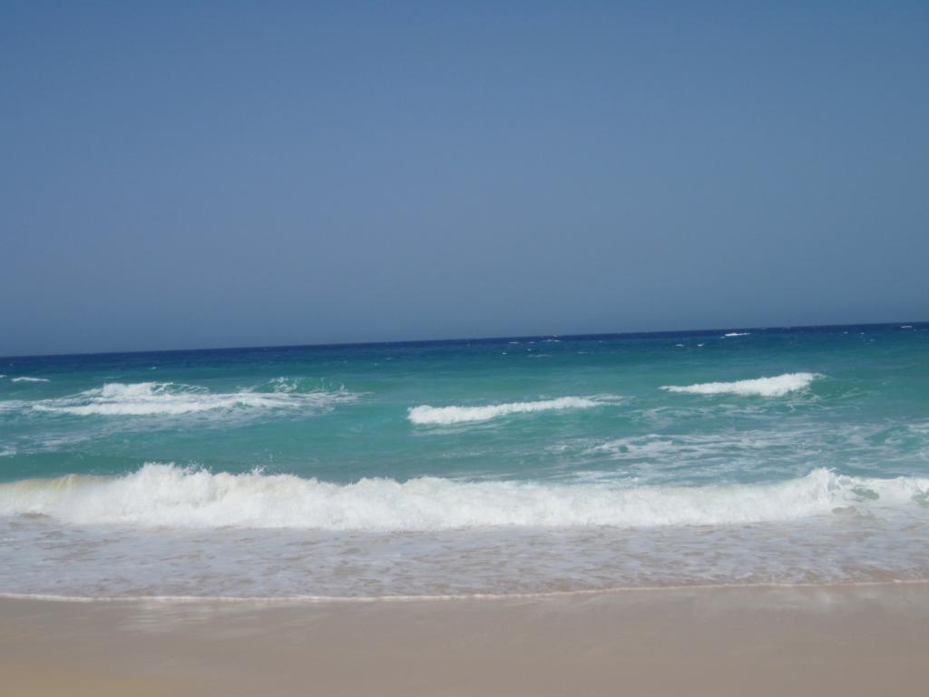 Fuerteventura Juni 2011 (31).JPG