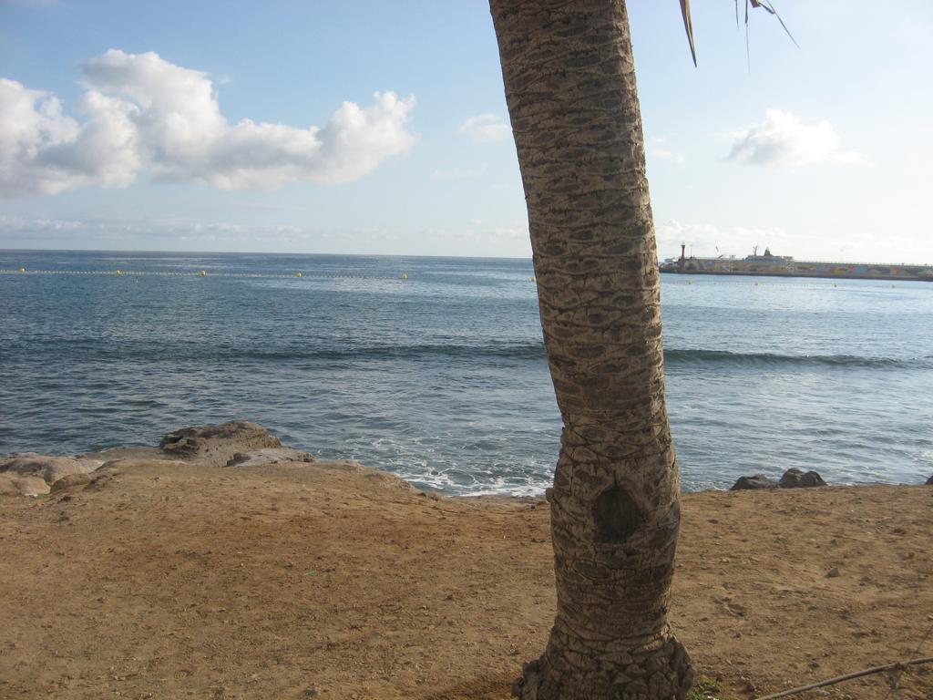 Tenerife Mai 2008 (56).JPG