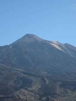 Tenerife Mai 2008 (436).JPG
