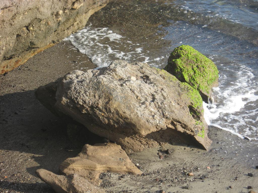 Tenerife Mai 2008 (63).JPG