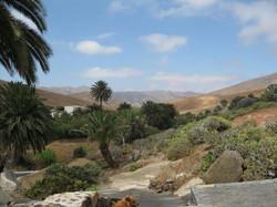 Fuerteventura Mai2009 (92).JPG
