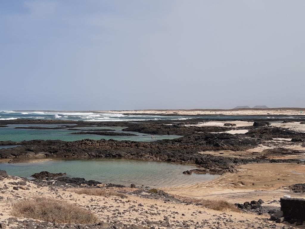 Fuerteventura Febr 2020 web (9)
