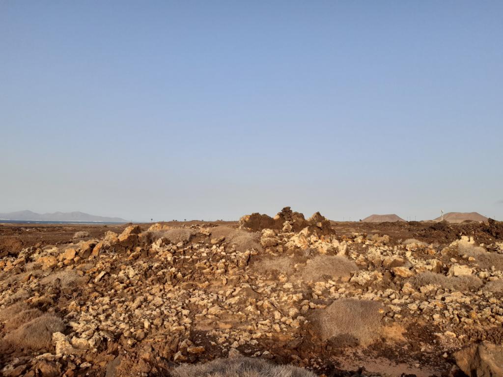 Fuerteventura Febr 2020 web (124)
