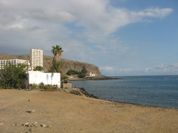 Tenerife Mai 2008 (50).JPG