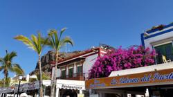 Gran Canaria Mai 2015 (83).JPG