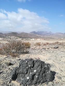 Fuerteventura 08 2018 (72)