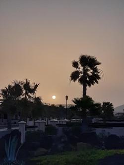 Fuerteventura Febr 2020 web (52)