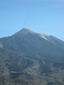 Tenerife Mai 2008 (431).JPG