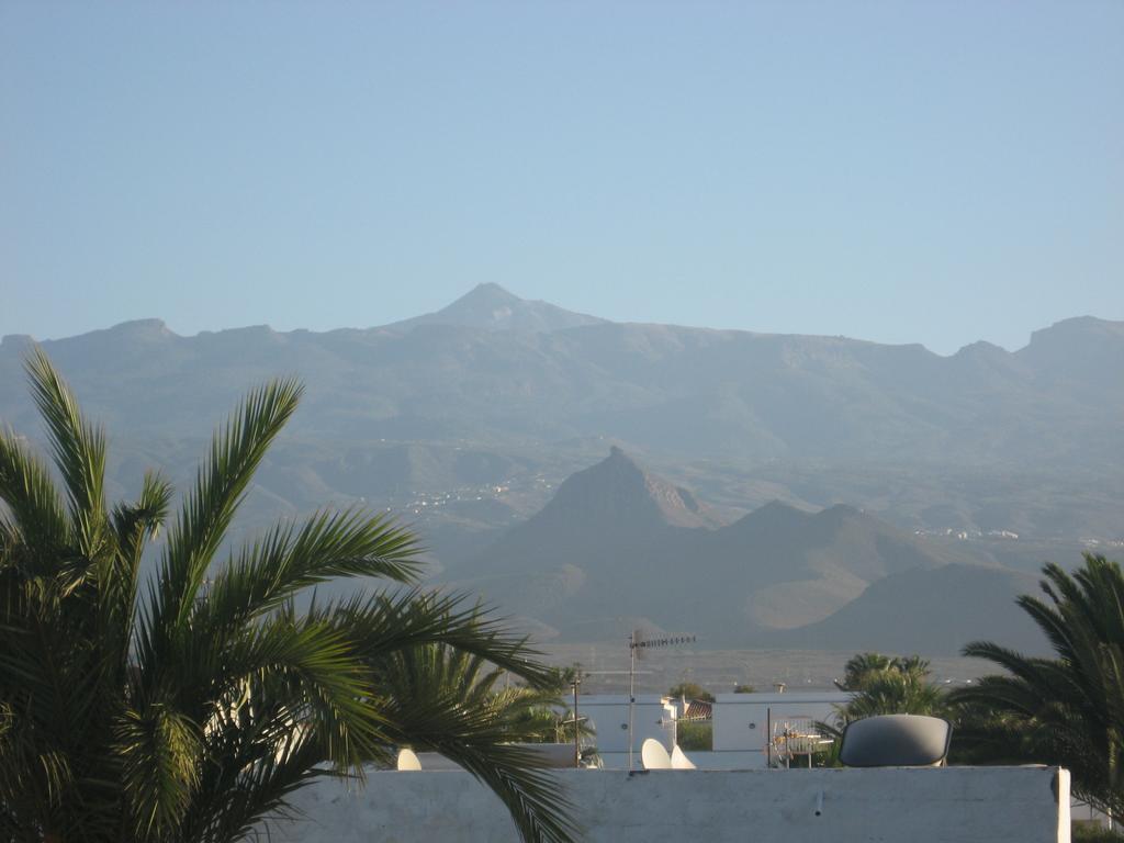 Tenerife Mai 2008 (337).JPG