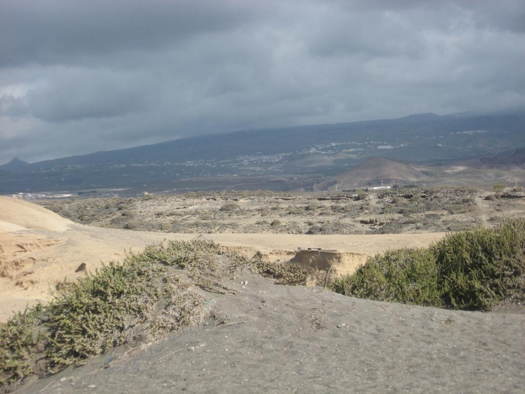 Tenerife Mai 2008 (119).JPG