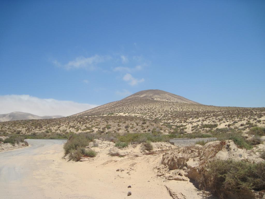 Fuerteventura Juni 2011 (89).JPG