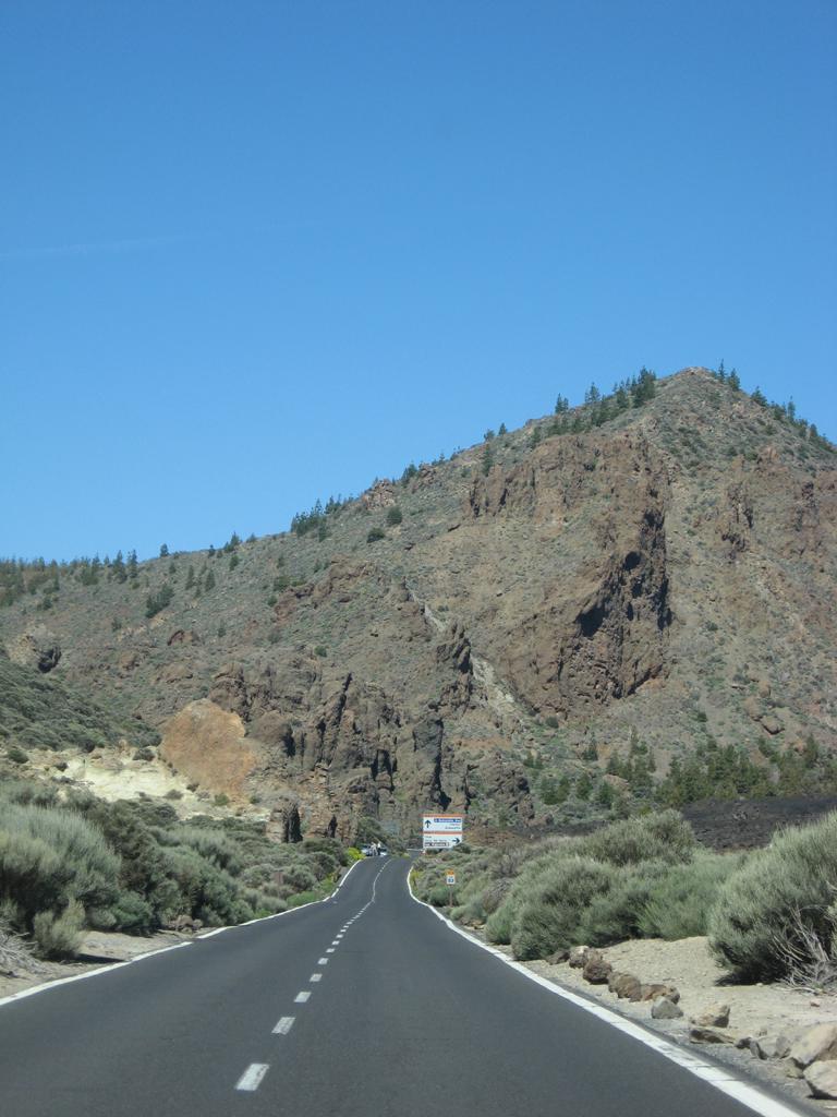 Tenerife Mai 2008 (537).JPG