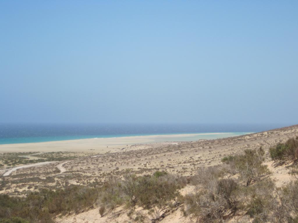Fuerteventura Juni 2011 (82).JPG