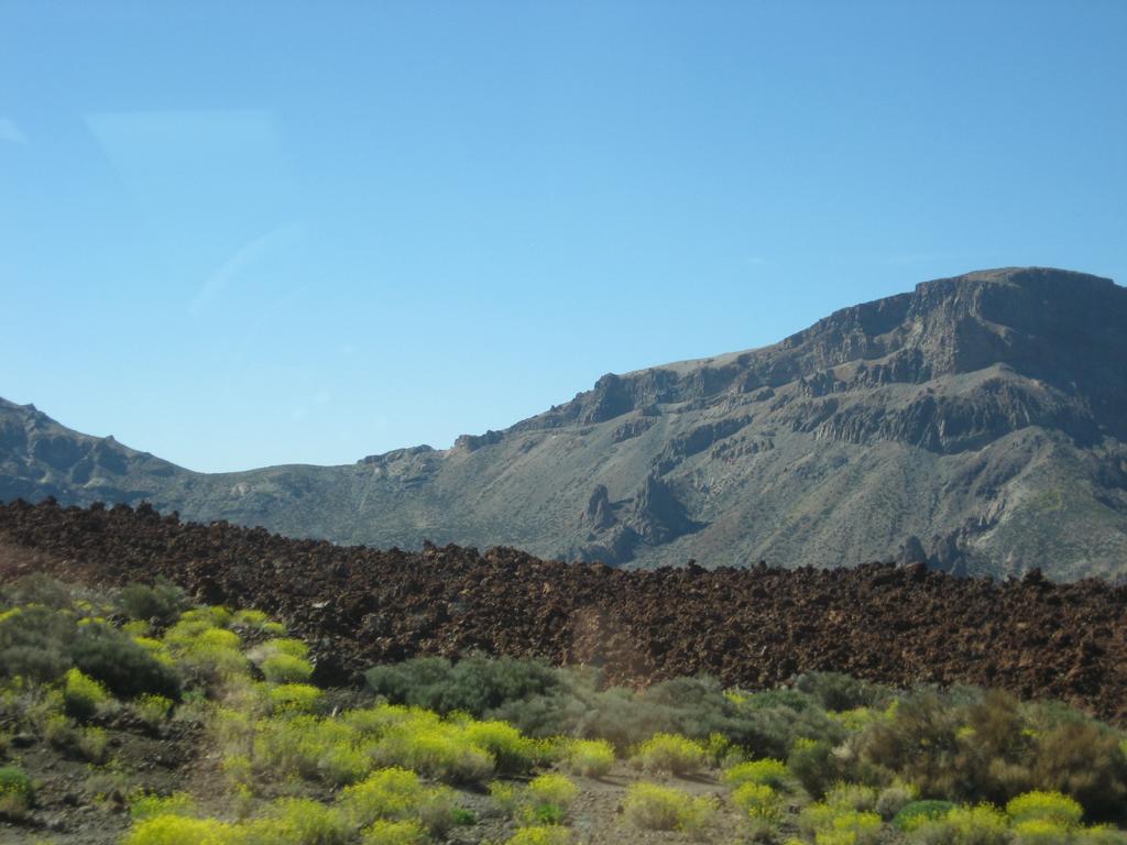 Tenerife Mai 2008 (478).JPG