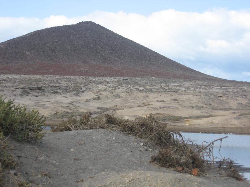 Tenerife Mai 2008 (115).JPG