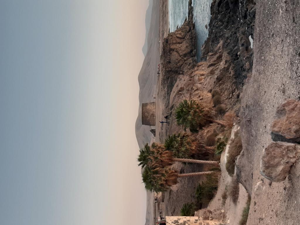 Fuerteventura Febr 2020 web (110)
