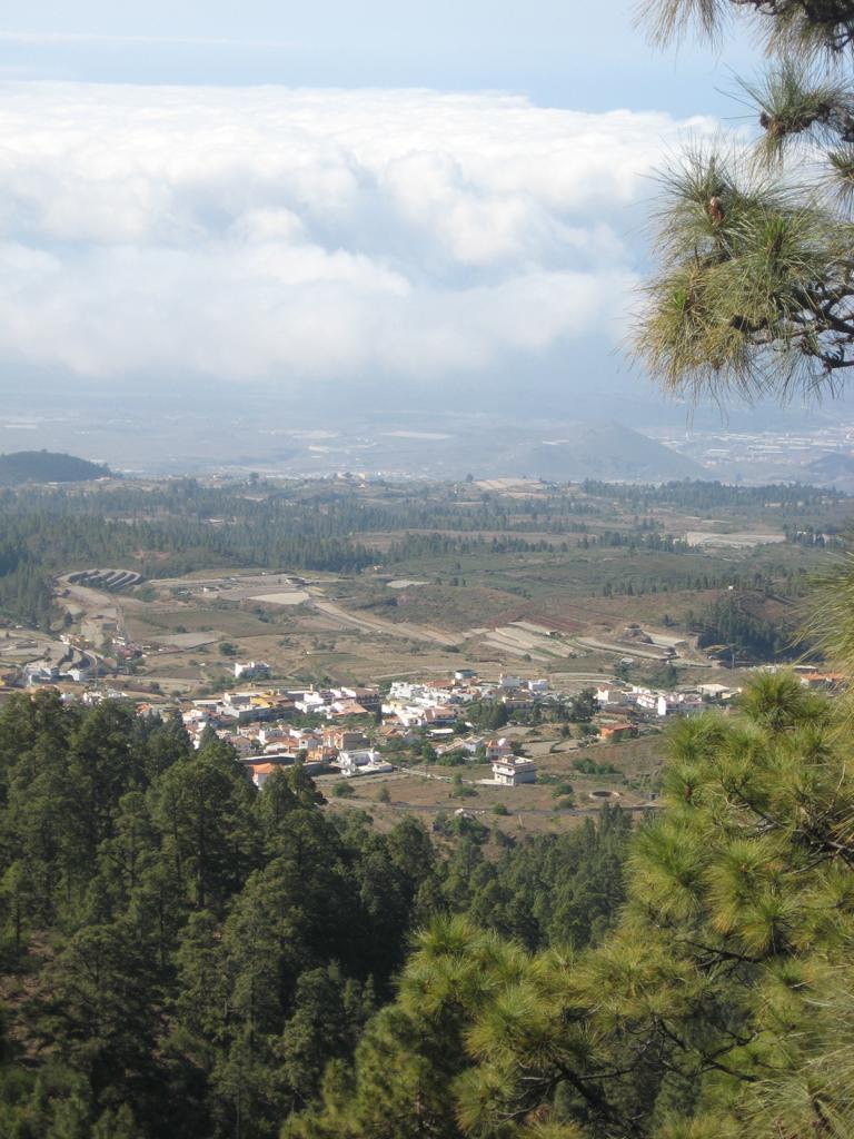Tenerife Mai 2008 (404).JPG