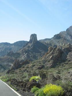 Tenerife Mai 2008 (448).JPG
