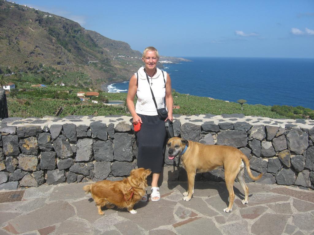 Tenerife Mai 2008 (241).JPG