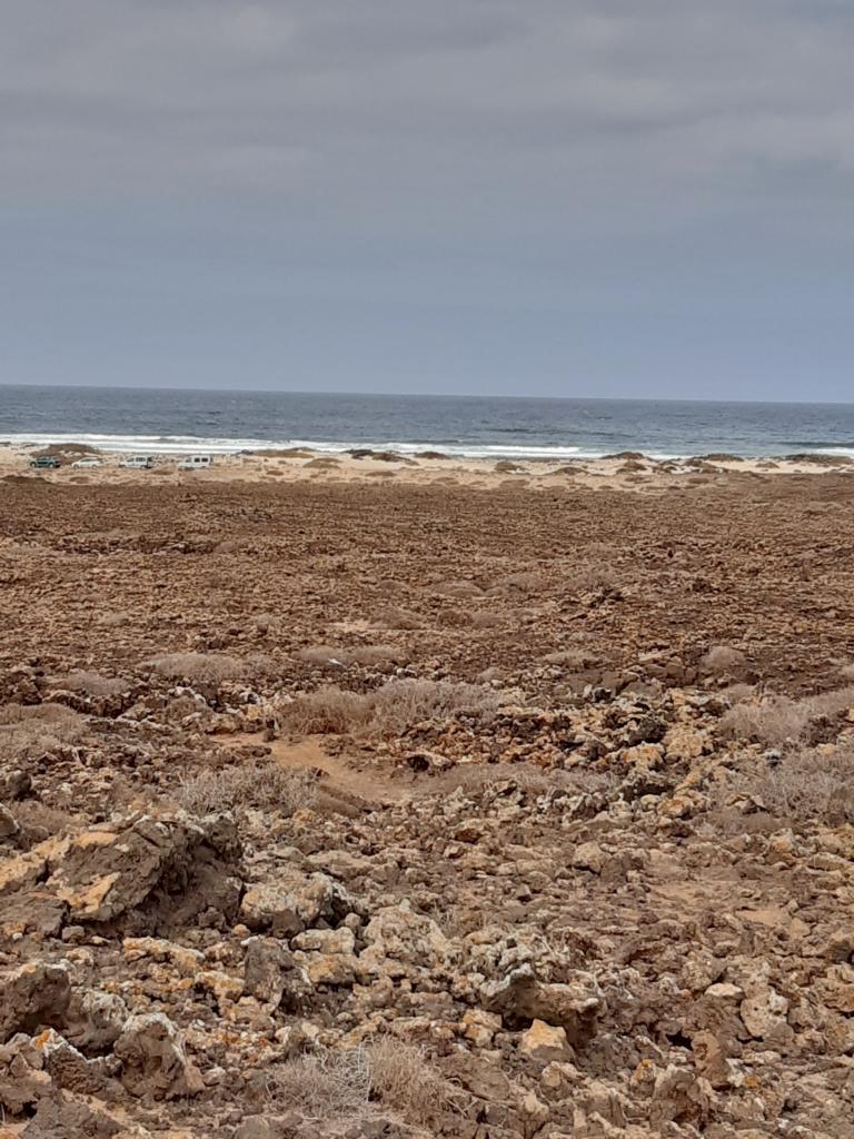 Fuerteventura Febr 2020 web (95)
