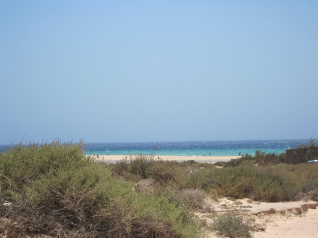 Fuerteventura Juni 2011 (88).JPG