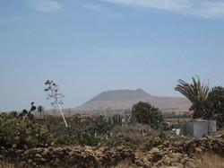 Fuerteventura Mai2009 (76).JPG