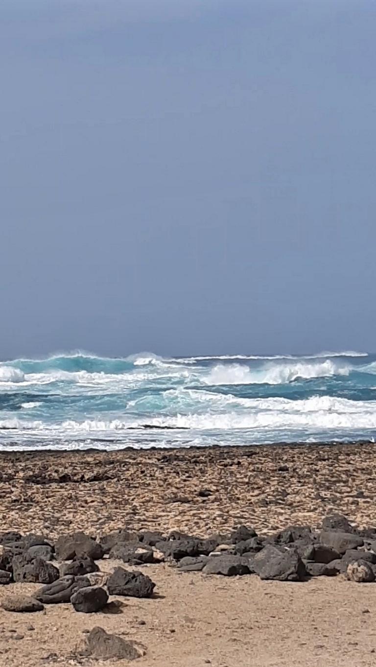 Fuerteventura Febr 2020 web (12)