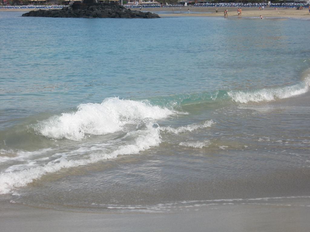 Tenerife Mai 2008 (169).JPG