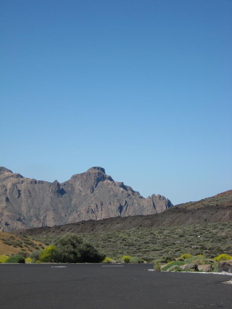 Tenerife Mai 2008 (487).JPG