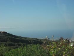 Tenerife Mai 2008 (359).JPG