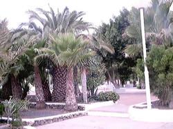 Leben auf Fuerte 2001 (115)