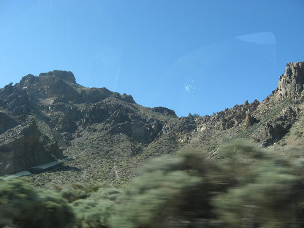 Tenerife Mai 2008 (442).JPG