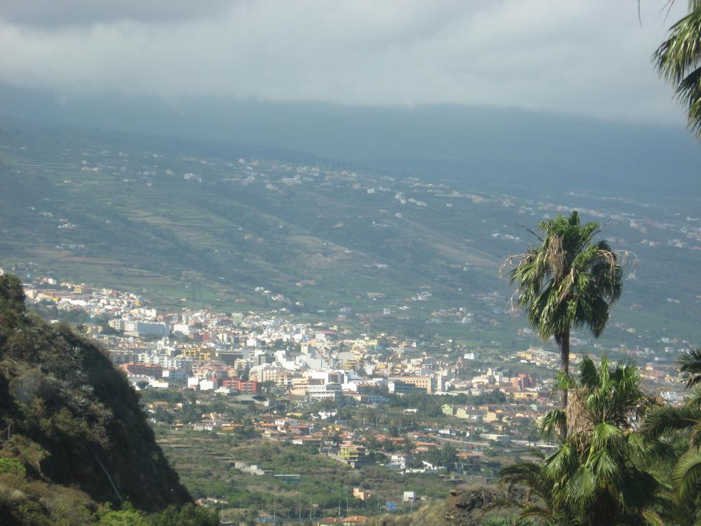 Tenerife Mai 2008 (215).JPG