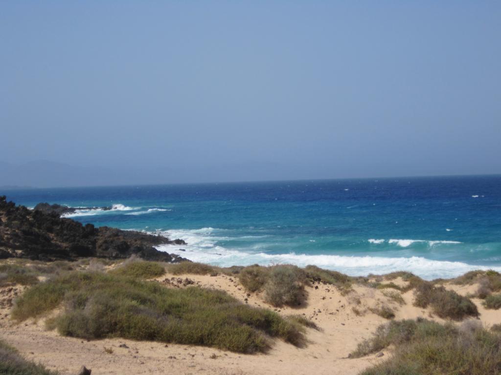 Fuerteventura Juni 2011 (27).JPG