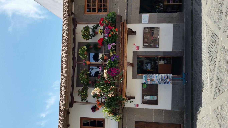 Gran Canaria Mai 2015 (43).JPG