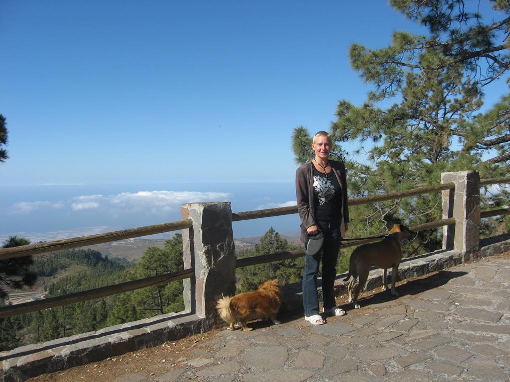 Tenerife Mai 2008 (413).JPG